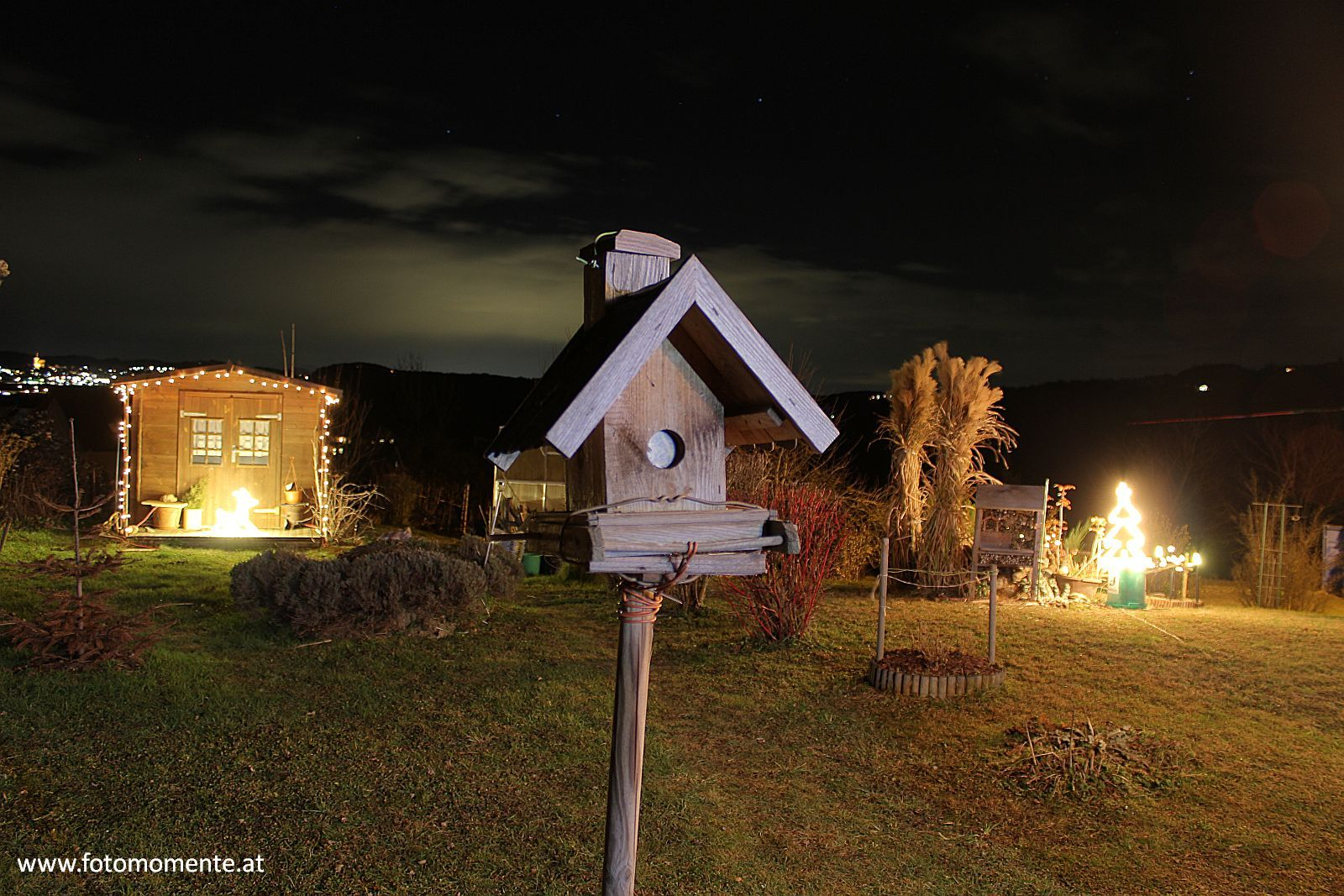 vogelhaeuschen weihnachten beleuchtung nacht - Vogelhäuschen bei Nacht mit Weihnachtsbeleuchtung