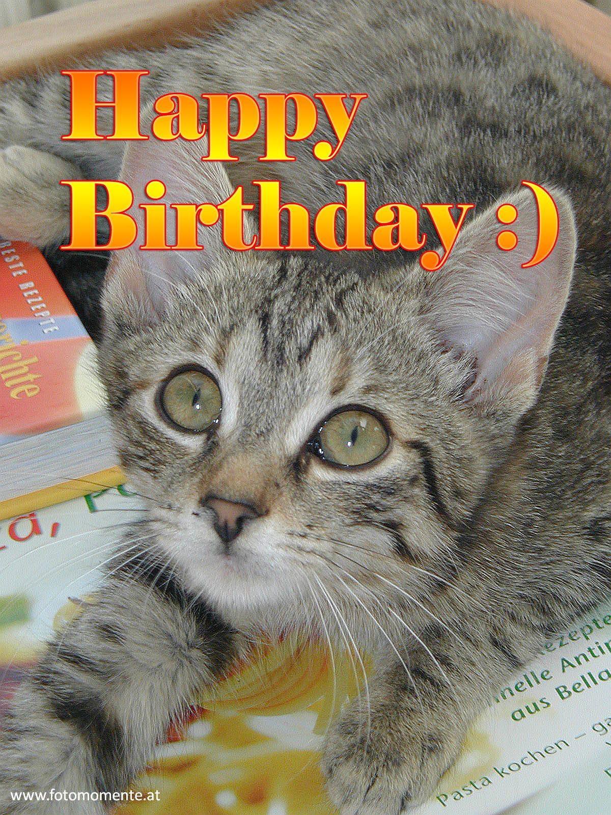 Happy Birthday - Happy Birthday - Karte