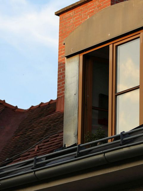 Suchbild Katze Nr2 480x640 - Wieviele Katzen verstecken sich auf diesem Foto? – Suchbild Nr.1