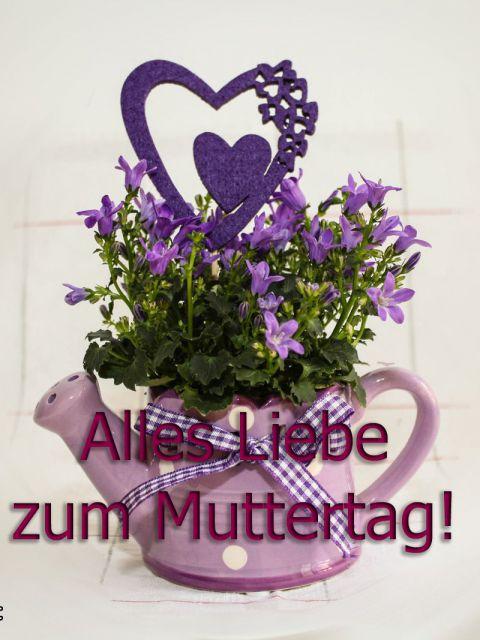 alles gute zum muttertag 480x640 - Alles Gute zum Muttertag am 11.5.2014