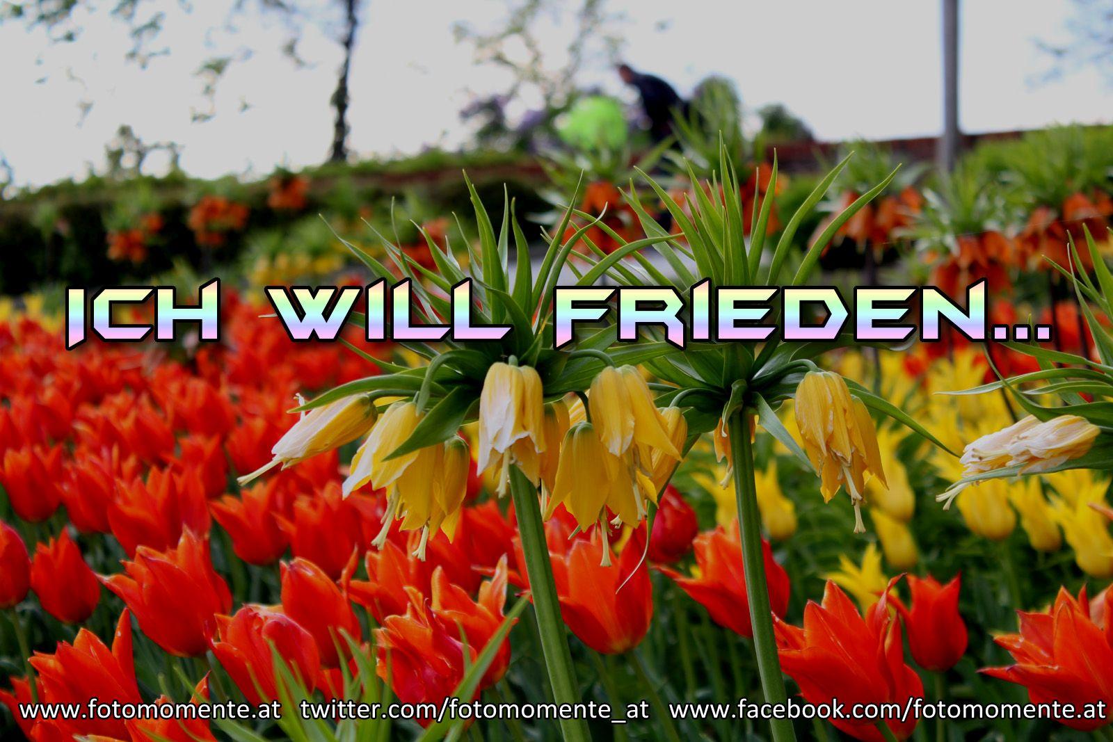 ich will frieden - Ich will Frieden