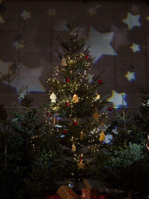 Weihnachtsbaum am Weihnachtsmarkt in den Kasematten