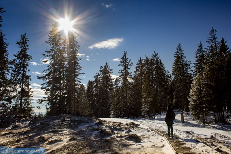schöckl schnee 12 800x534 - Der Schöckl im Schnee