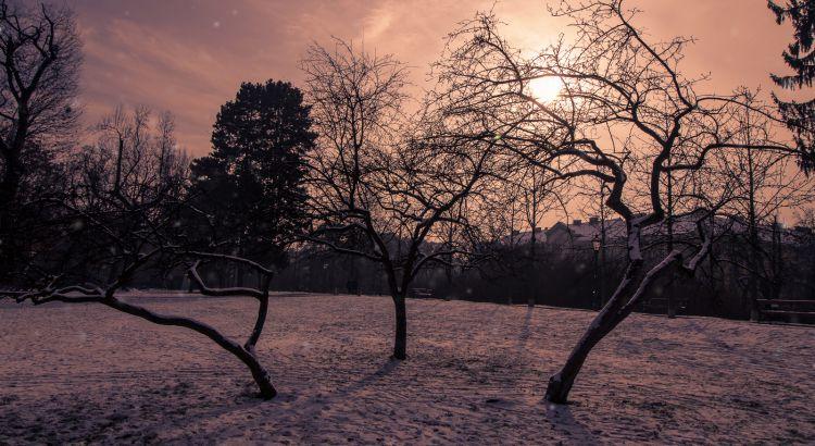 Graz-Schnee-Schneefall-1812