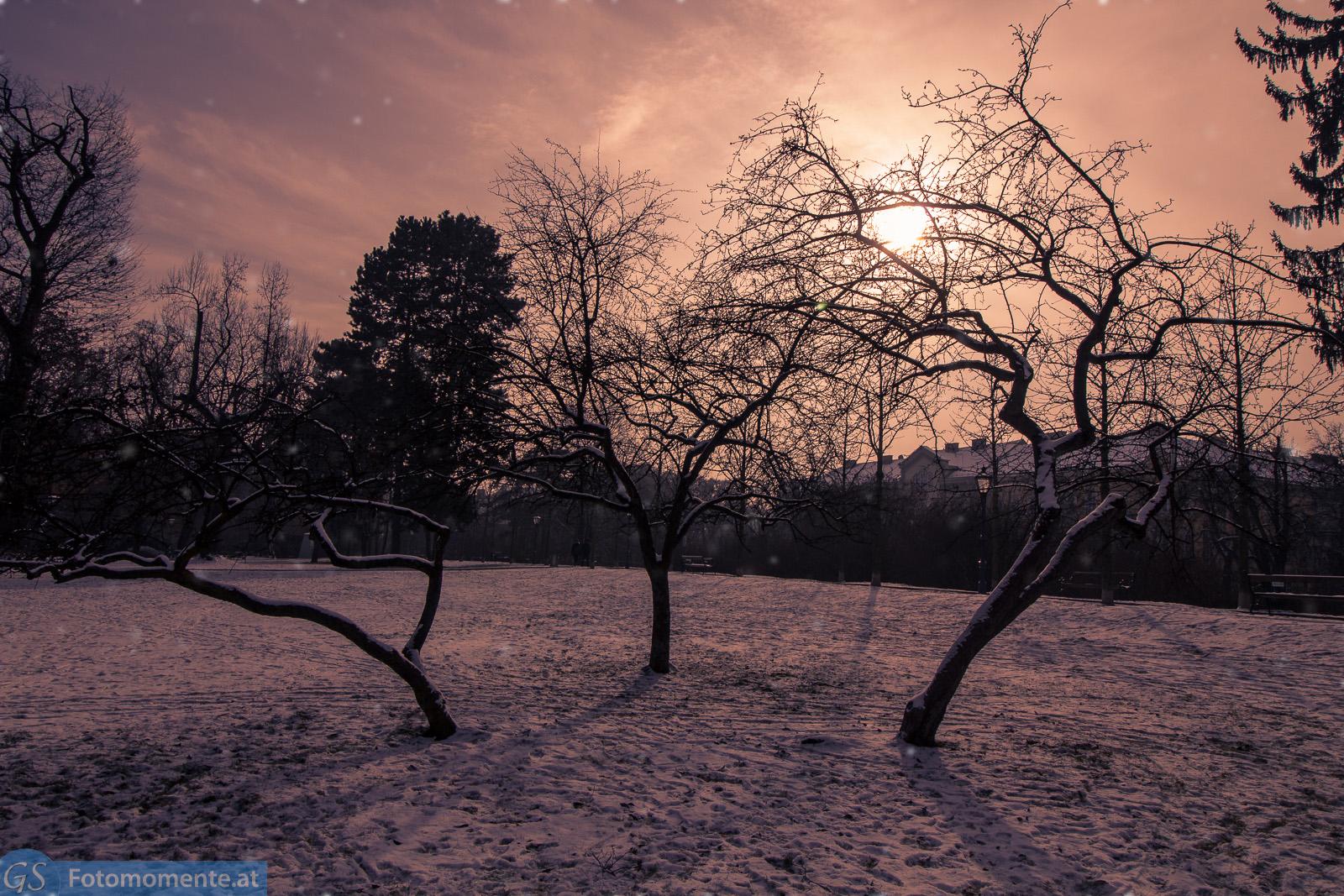 Graz Schnee Schneefall 1812 - Graz im Schnee, Jänner 2016