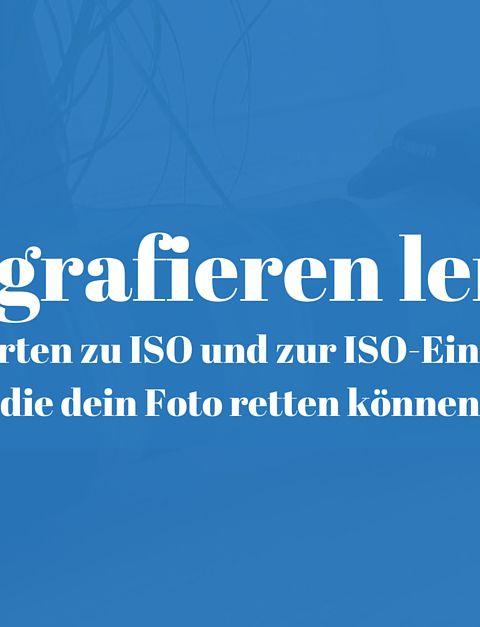9 Antworten zu ISO und zur ISO Einstellung die dein Foto retten können 480x627 - 9 Antworten zu ISO und zur ISO-Einstellung, die dein Foto retten können