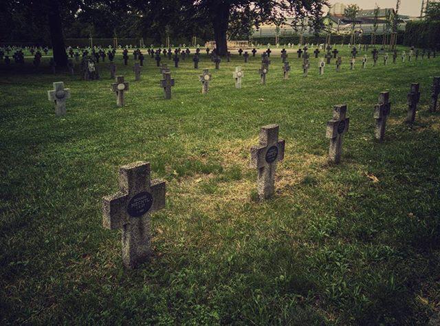 21689437 1663428017014574 3829710475419975680 n - Soldatengräber am Zentralfriedhof in Graz - Instagram