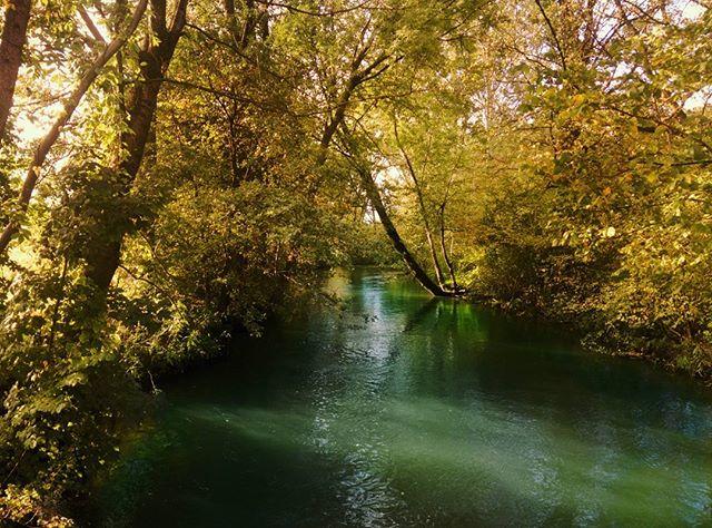 21911262 1928860490473655 1912885413236703232 n - Ein Bächlein im Herbst - Puntigam - Instagram