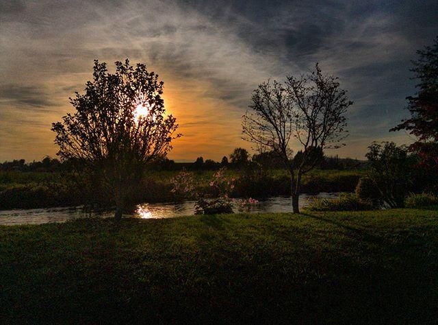 22709618 1652171511536749 1394092963478372352 n - Sonnenuntergang beim Abendspaziergang - Instagram